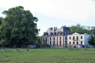 la cour du chateau - montlieu