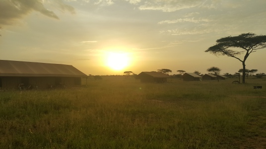 mawe camp